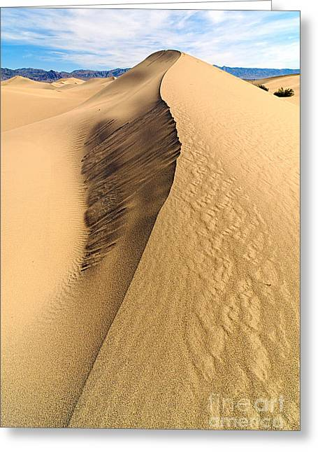Sand Patterns Greeting Cards - Collapsed sand dune ridge in Death Valley National Park Greeting Card by Jamie Pham