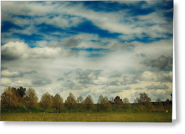 Big Sky Greeting Cards - Collecting Thoughts Greeting Card by Laurie Search