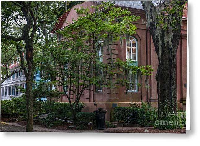 Charleston Pathway Greeting Cards - Pathway to College Greeting Card by Dale Powell
