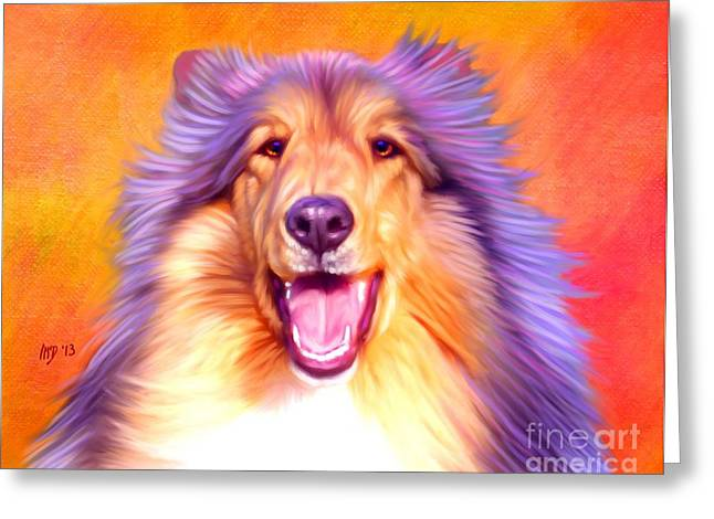 Collie Pics Greeting Cards - Collie Greeting Card by Iain McDonald