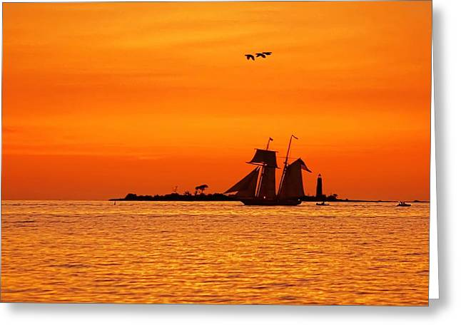 Tall Ships On Water Greeting Cards - Collingwood Tall Ships Greeting Card by Jeff S PhotoArt