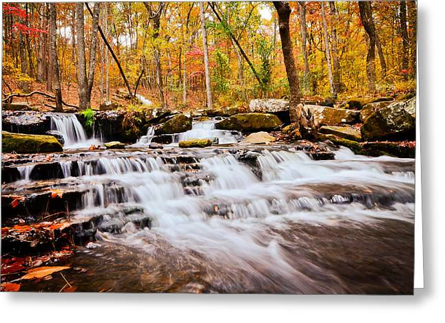 Heber Springs Greeting Cards - Collins Creek Waterfall I Greeting Card by Noel Pennington