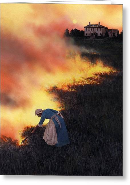 Destroyed Greeting Cards - Colonial Woman Burning Fields Greeting Card by Rob Wood