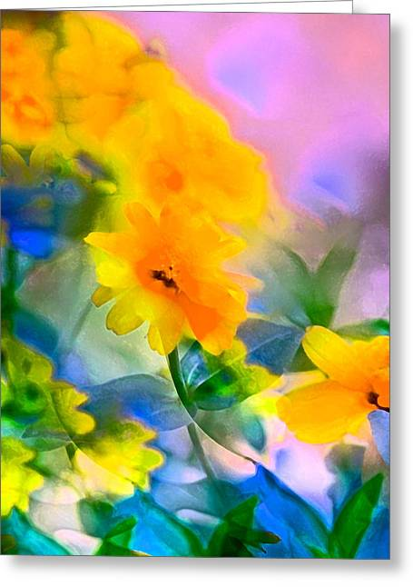 Color 105 Greeting Card by Pamela Cooper