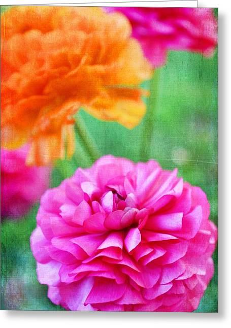 Pamela Cooper Greeting Cards - Color 150 Greeting Card by Pamela Cooper
