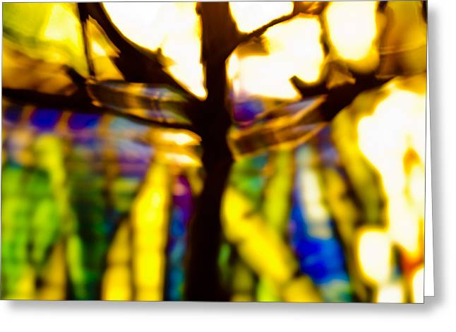 Shapeless Greeting Cards - Color Aflame Greeting Card by Christi Kraft