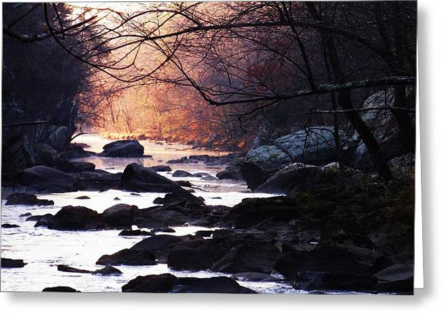 Blackstone River Greeting Cards - Color Ahead Greeting Card by Ted Rickson