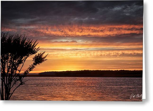 Beaufort County Greeting Cards - Color at Last Light Greeting Card by Phill  Doherty
