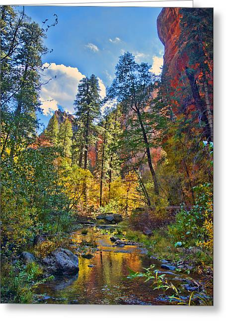 Best Sellers -  - West Fork Greeting Cards - Color Blast Greeting Card by Brian Lambert