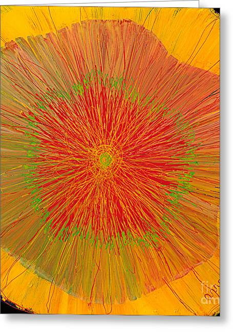 Color Burst 4 Greeting Card by Anna Skaradzinska