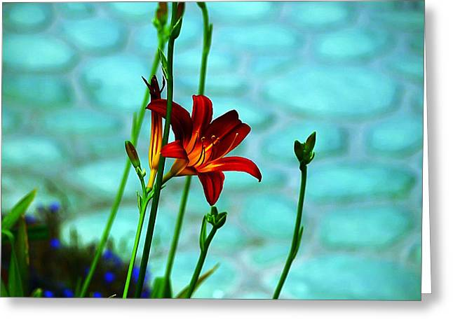 Stamen Digital Art Greeting Cards - Color Connection Greeting Card by Camille Lopez