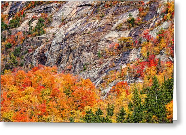 Ledge Greeting Cards - Color In The Notch Greeting Card by Jeff Sinon