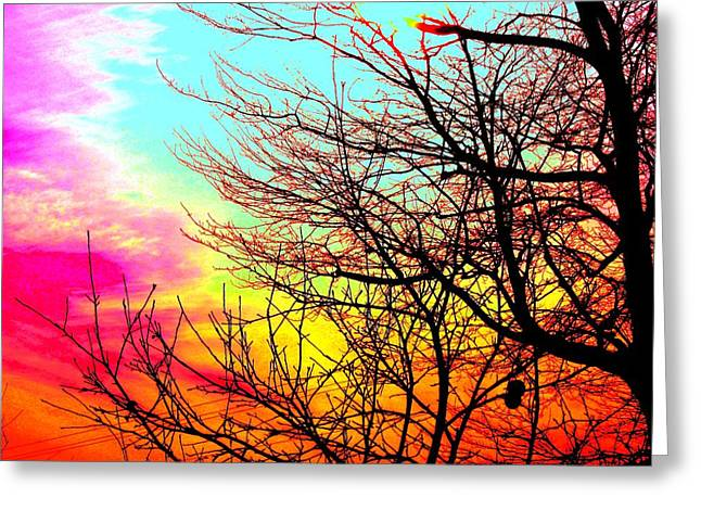 Amazing Sunset Greeting Cards - Color in the Sky Greeting Card by Mike Grubb