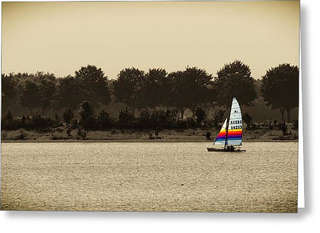 Sailboat Photos Greeting Cards - Color Me Sailing Greeting Card by Mountain Dreams