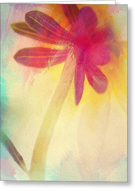 A New Focus Photography Greeting Cards - Color My World Greeting Card by A New Focus Photography