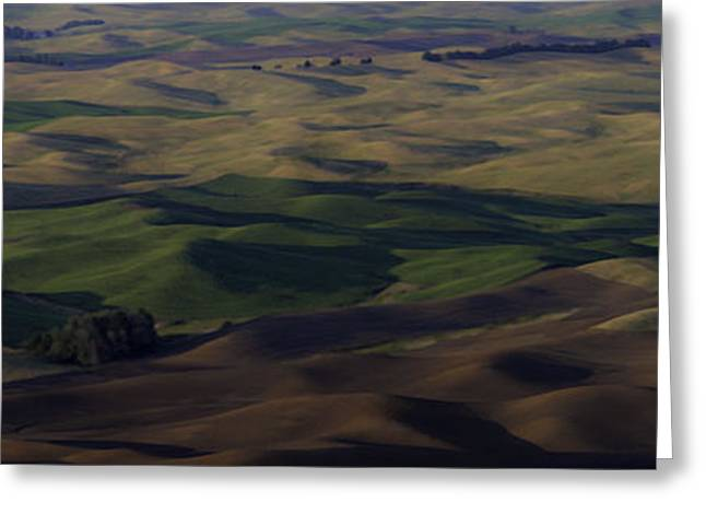 Usa Photographs Greeting Cards - Color of Hills Greeting Card by Latah Trail Foundation