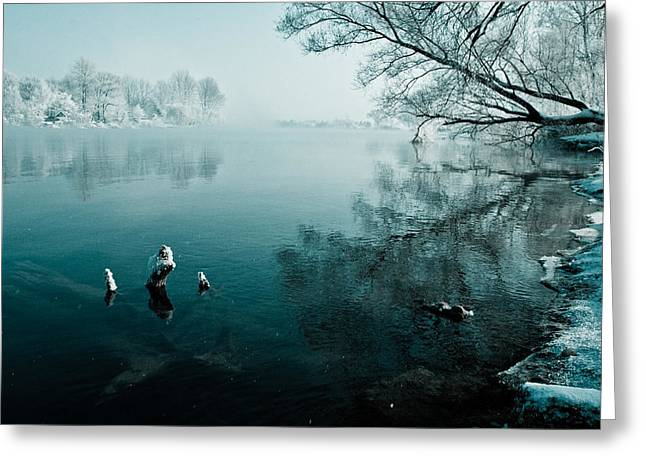 Davorin Mance Greeting Cards - Color of Ice Greeting Card by Davorin Mance