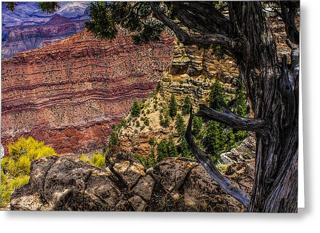 Colorful Greeting Cards - Color of the Canyon Greeting Card by Fred Larson