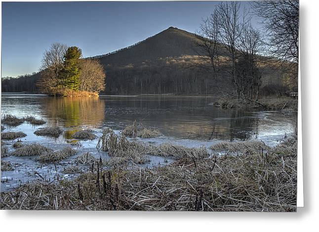 Southern Appalachians Greeting Cards - Color on a Frozen Lake Greeting Card by Steve Hurt