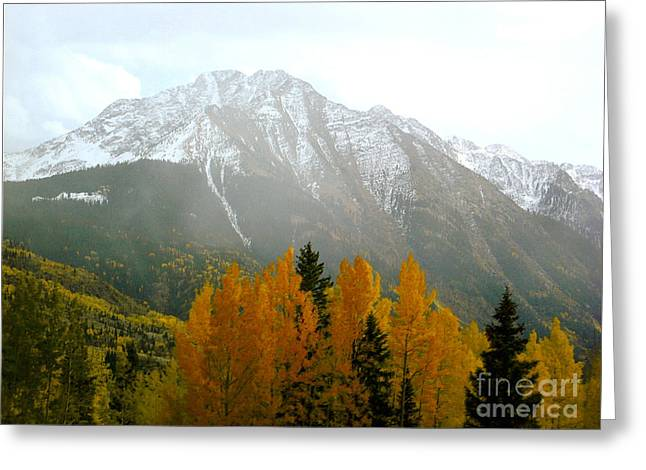 Framed Winter Snow Print Greeting Cards - Colorado Aspen Mountain Greeting Card by Andrea Hazel Ihlefeld