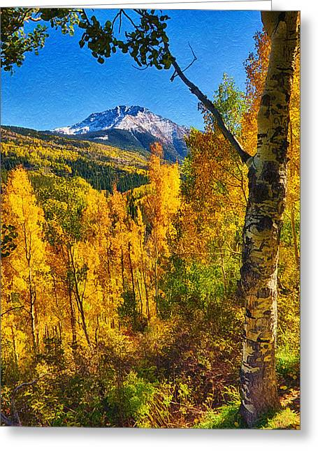 Leaf Peepers Greeting Cards - Colorado Aspen Greeting Card by Priscilla Burgers