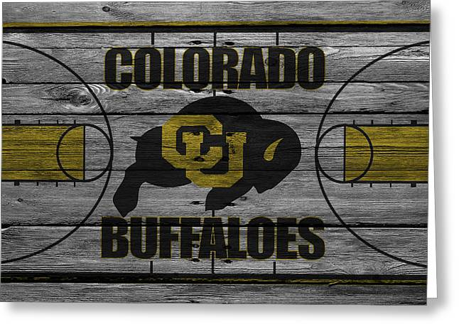 Seated Buffalo Greeting Cards - Colorado Buffaloes Greeting Card by Joe Hamilton