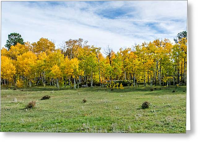 Colorado Fall Panorama Greeting Card by Baywest Imaging