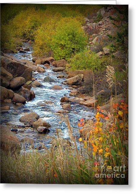 Frizzell Greeting Cards - Colorado Fall Stream Greeting Card by Michelle Frizzell-Thompson