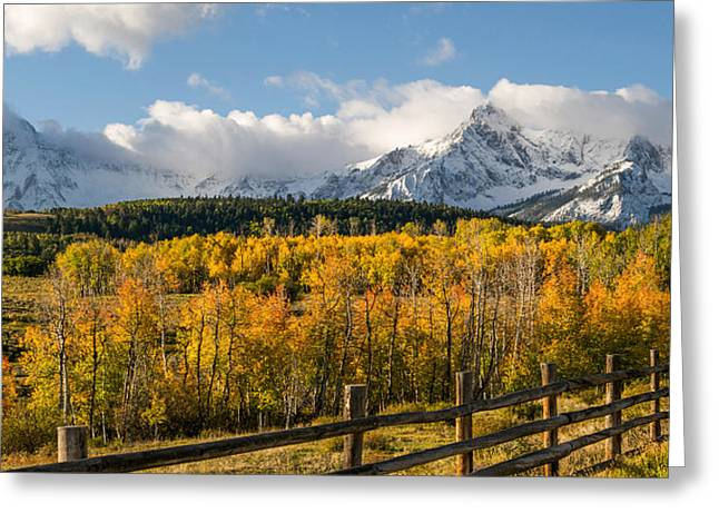 Passed Out Greeting Cards - Colorado Gold - Dallas Divide Greeting Card by Aaron Spong