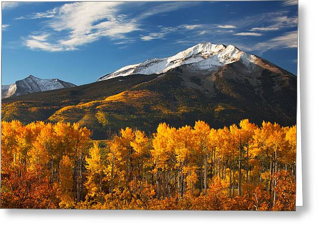 Scenic Drive Greeting Cards - Colorado Gold Greeting Card by Darren  White