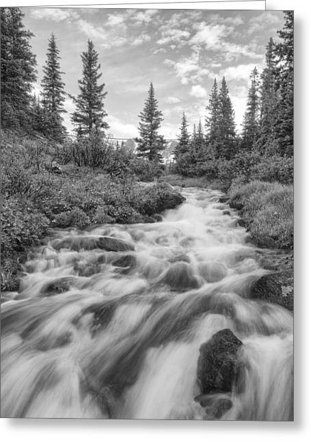 Berthoud Greeting Cards - Colorado Images - Rocky Mountain Cascade on Berthoud Pass Greeting Card by Rob Greebon