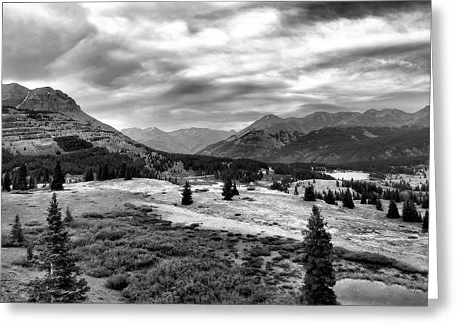 Tree In Rock Greeting Cards - Colorado In Black And White Greeting Card by Dan Sproul