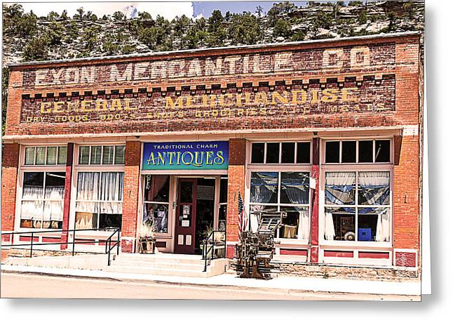 Historic Country Store Greeting Cards - Colorado Mercantile Historical Building Greeting Card by Janice Rae Pariza
