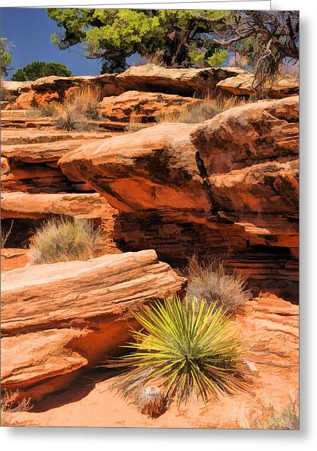 Colorado Greeting Cards - Colorado National Monument Desert Flora Greeting Card by Christopher Arndt