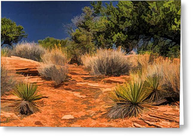 Colorado Greeting Cards - Colorado National Monument Desert Flora Panorama Greeting Card by Christopher Arndt