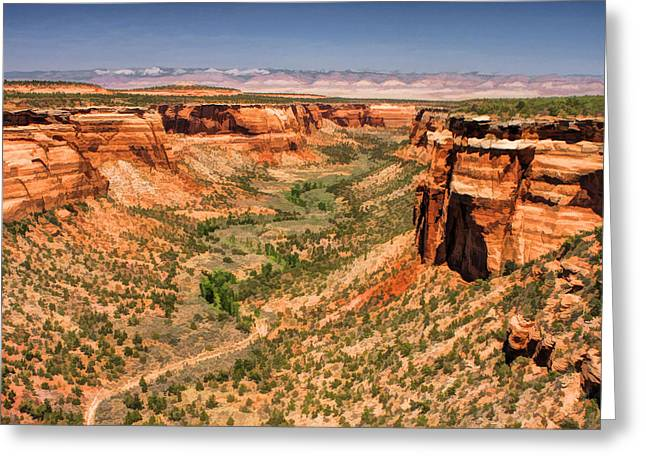 Colorado Plateau Greeting Cards - Colorado National Monument Ute Canyon Greeting Card by Christopher Arndt