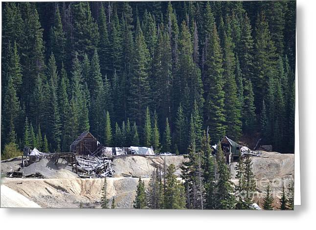 Old Mine Greeting Cards - Colorado Old Mine Forest Greeting Card by Andrea Hazel Ihlefeld