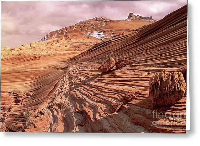 Colorado Plateau Sandstone Arizona Greeting Card by Yva Momatiuk and John Eastcott