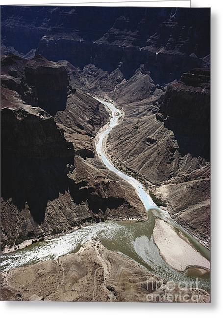 Merging Greeting Cards - Colorado River, Grand Canyon Np Greeting Card by Joe Munroe
