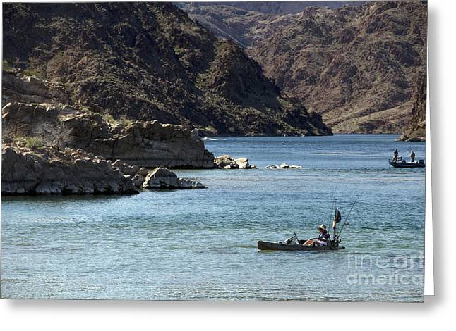 Willow Lake Greeting Cards - Colorado River Greeting Card by Mark Newman