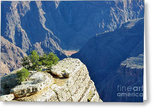 Colorado Photographs Greeting Cards - Colorado River South Rim Overlook Grand Canyon National Park Greeting Card by Shawn O