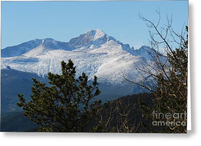 Colorado State University Greeting Cards - Colorado Rockies 5 Greeting Card by Douglas Lintner
