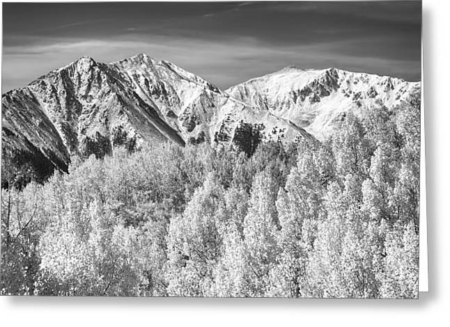 Colorado Rocky Mountain Autumn Magic Black And White Greeting Card by James BO  Insogna