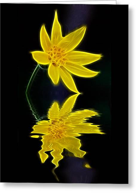 Glowing Mixed Media Greeting Cards - Colorado Wildflower Greeting Card by Shane Bechler
