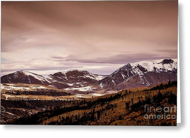 Ski Art Greeting Cards - Colorado Winter Peaks Greeting Card by Janice Rae Pariza