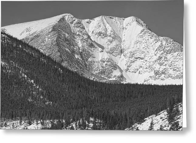 Mummy Range Greeting Cards - Colorado Ypsilon Mountain Rocky Mountain National Park  Greeting Card by James BO  Insogna