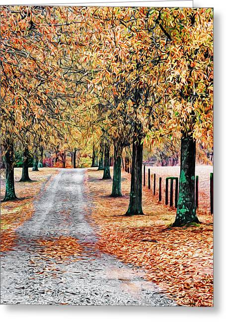Country Dirt Roads Digital Greeting Cards - Colorful Autumn Drive Greeting Card by Patrick M Lynch