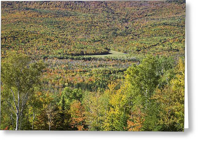 New England Wilderness Greeting Cards - Colorful Autumn Landscape of Weld Maine Greeting Card by Keith Webber Jr