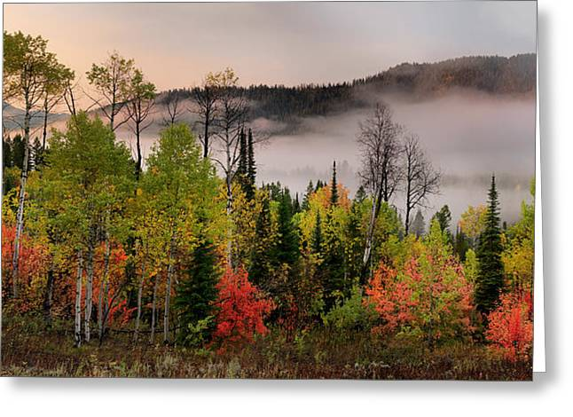 Colorful Autumn Morning Greeting Card by Leland D Howard