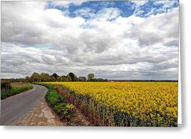 Open Field Greeting Cards - Colorful Backroads - Rapeseed Fields Greeting Card by Gill Billington